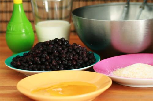 ingrédients glace myrtille