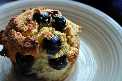 muffins noix de coco myrtille