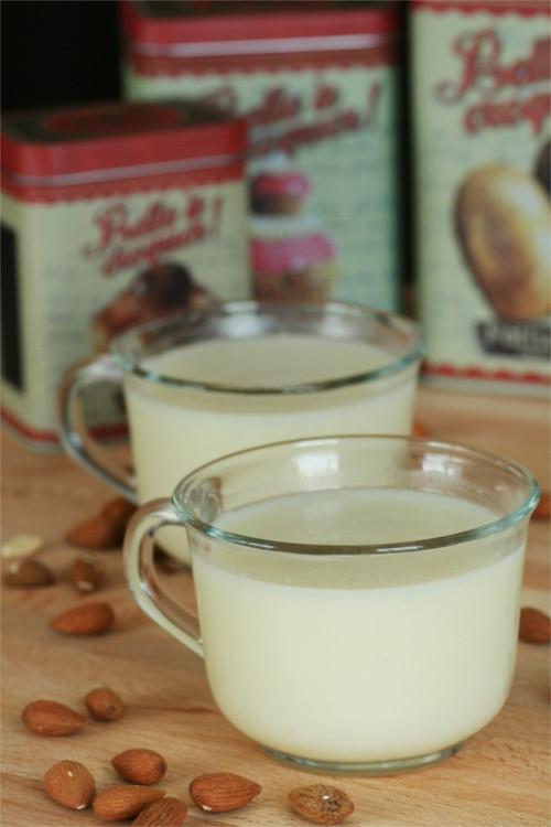 lait d'amandes maison