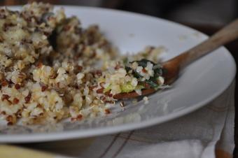 gratin de quinoa et de poireaux
