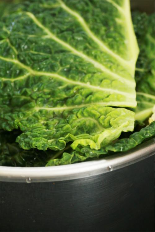 chou vert avant cuisson